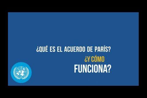 Embedded thumbnail for ¿Se ha preguntado alguna vez qué es el Acuerdo de París y cómo funciona?