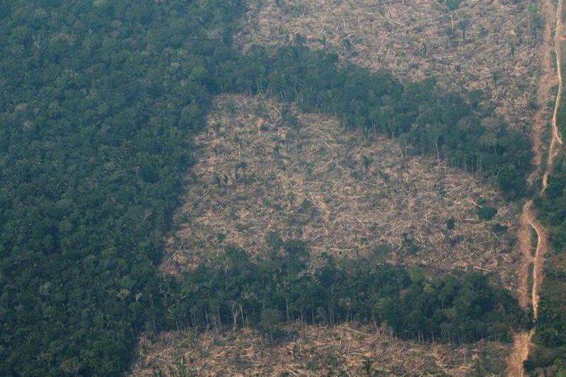 Vista aérea de áreas deforestadas de la selva amazónica en Brasil, en foto de archivo.