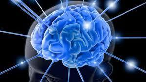 Resultado de imagen de El cerebro humano cpu